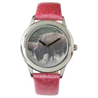 Eine Herde von Brown-Bison lassen in einer Uhr