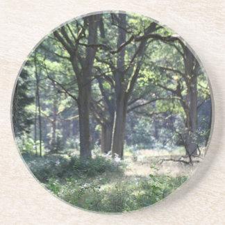 Eine historische hölzerne Weide mit Eichenbäumen Sandstein Untersetzer
