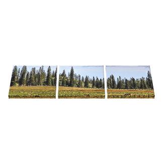 Eine Lanai Ranch-Dreiergruppen-Leinwand Gespannte Galerie Drucke