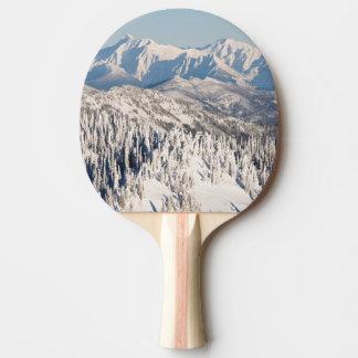 Eine landschaftliche Ansicht von Snowybergen und Tischtennis Schläger