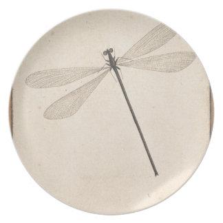 Eine Libelle, durch Nicolaas Struyk, früh 18. C. Melaminteller