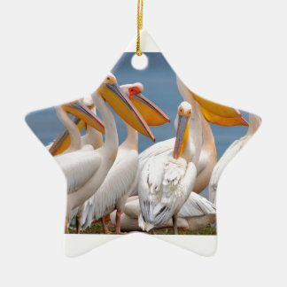 Eine Menge der Pelikane Keramik Stern-Ornament