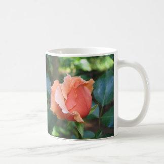 Eine perfekte Rosenknospe Kaffeetasse