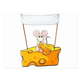 Eine Ratte, die über dem Käse mit einem leeren Postkarte