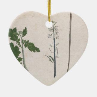 Eine Rettich-Pflanze, ein Samen und eine Blume Keramik Herz-Ornament