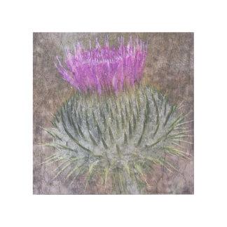 Eine schottische Distel Galerieleinwand
