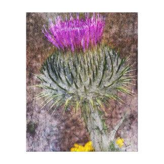 Eine schottische Distel Leinwanddruck