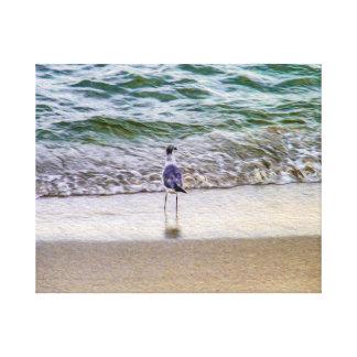 Eine Seemöwe, die heraus über der Küste anstarrt Leinwanddruck