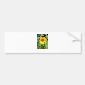 Eine Sonnenblume Autoaufkleber