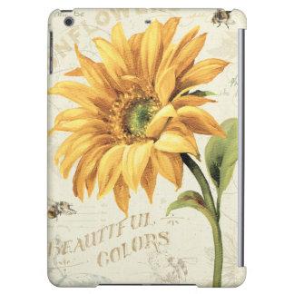 Eine Sonnenblume in voller Blüte