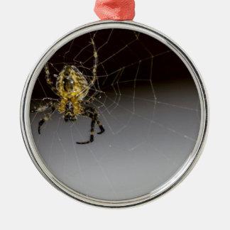 Eine Spinne und sein Netz herauf nahes Rundes Silberfarbenes Ornament