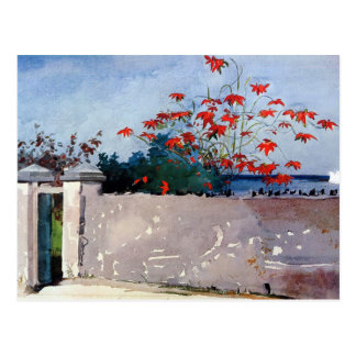 Eine Wand in Nassau-Aquarell durch Winslow Homer Postkarte