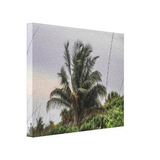 Eine wilde Palme, die im Wind-Leinwand-Druck Leinwanddruck