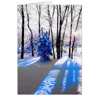 Eine Winter-Sonnenwende-/Feiertags-Karte Grußkarte