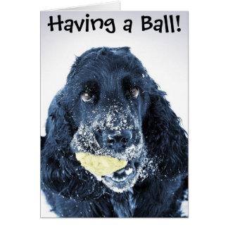 Einen Ball haben! Grußkarte