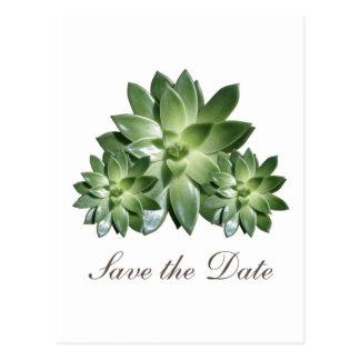 Einfacher Succulent laden Save the Date ein Postkarte