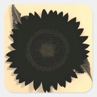 Einfarbige Sonnenblume Quadratischer Aufkleber