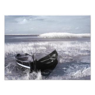 Eingefroren Photos