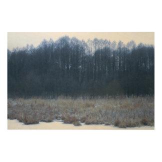 Eingefroren Holzdrucke