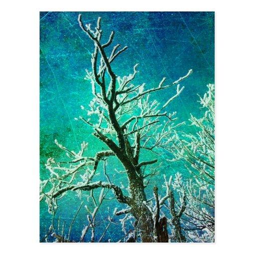 Eingefroren Postkarten