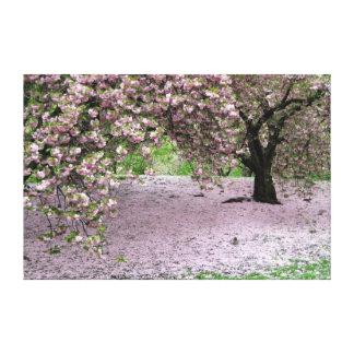 eingewickelte Leinwand der Kirschblüte Baum
