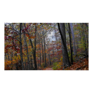 Eingreifennebel auf dem Herbst-Waldhinterplakat Poster