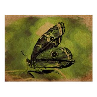 Einsamer Schmetterling Postkarte