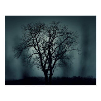 Einsamer toter Baum nachts Postkarte