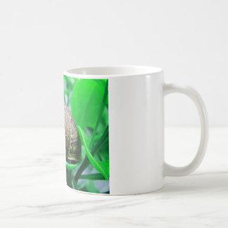 """Einsamkeit (alias """"grüne Schnecke """") Kaffeetasse"""