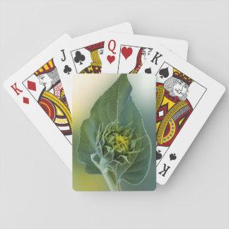 Einzigartig - spielkarten