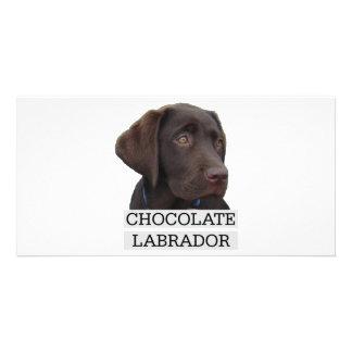 Einzigartiger Entwurf Schokoladen-Labradors! Photokarte