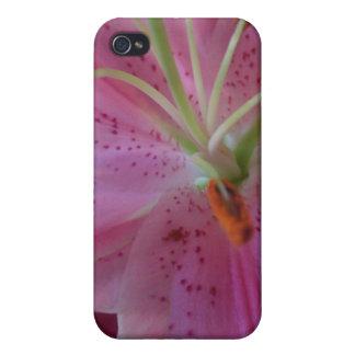 Einzigartiger Fall der Stargazer-Lilien-iPhone4 iPhone 4/4S Cover