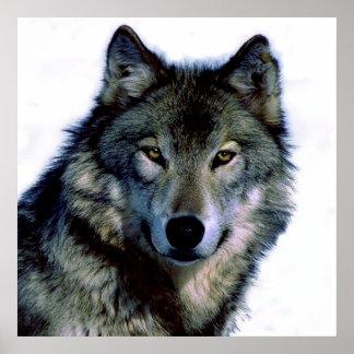 Einzigartiges motivierend Freiheits-Wolf-Plakat Poster