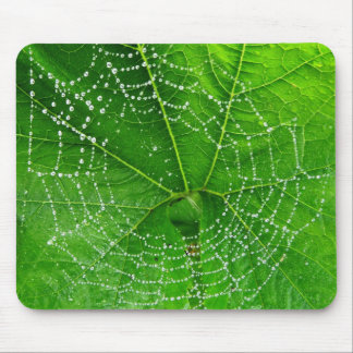 Einzigartiges Spinnen-Netz-Foto entwarf Computer Mauspads