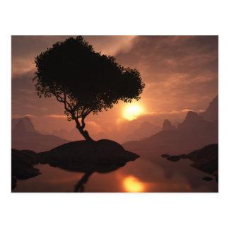 Einzige Baum-Postkarte Postkarte