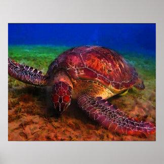 Einzige Meeresschildkröte Poster