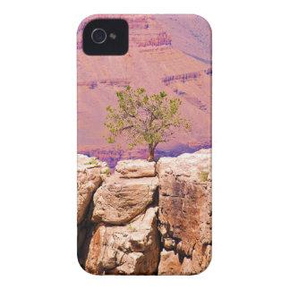 """""""Einziger Baum auf Schlucht-Ridge"""" Sammlung iPhone 4 Hüllen"""