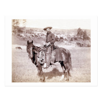 Einziger Cowboy Postkarte