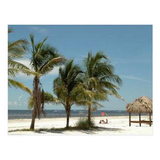 Einziger Strand an Fort- Myersstrand Florida Postkarte
