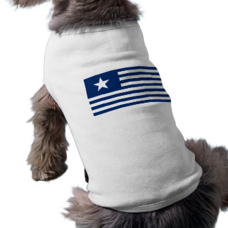 Einziges Sternenbanner Texas - Blau T-Shirt