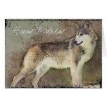 Einziges Wolf-BD Grußkarte