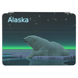 Eis-Rand-Eisbär iPad Air Hülle