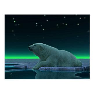 Eis-Rand-Eisbär Postkarte