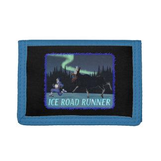 Eis-Roadrunner
