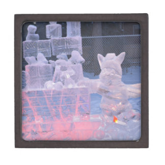Eis-Skulptur-sportlicher Künstler, der arktische Kiste