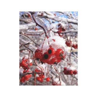 Eis-Sturm-Beeren-Foto-Leinwand-Kunst-Druck Leinwanddruck