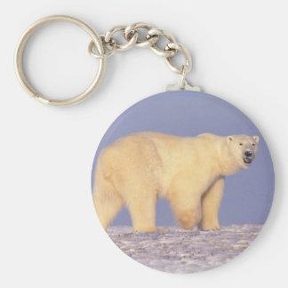 Eisbär in arktischem Alaska Schlüsselanhänger