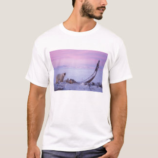 Eisbär mit Bowheadwalkarkasse auf Satz T-Shirt