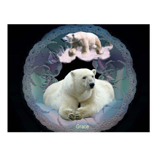 Eisbär-Postkarte