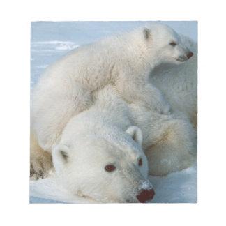 Eisbär-und CUB-Tier-Liebhaber Notizblock
